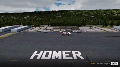PAHO Homer Airport screenshot