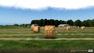 EG20 Clench Common Field screenshot