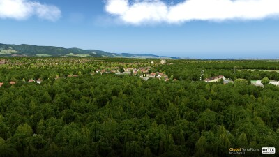 Global TerraFlora - X-Plane 11 screenshot
