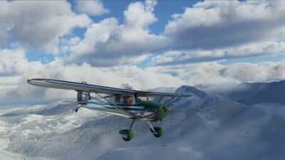 Cessna 140 - Microsoft Flight Simulator screenshot